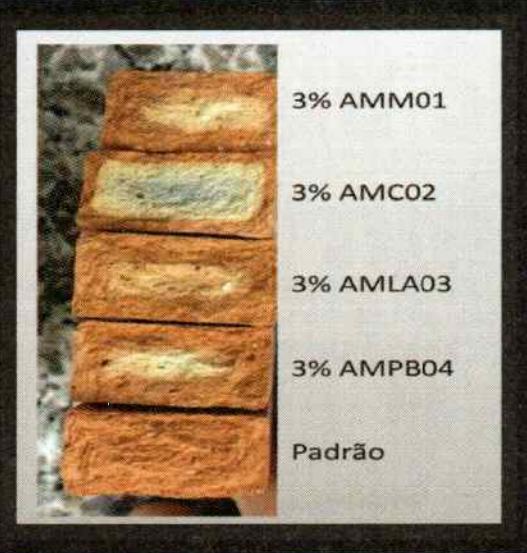 Figura 2 - Fotografia da seção de ruptura dos corpos de prova com adição de 3% de resíduo
