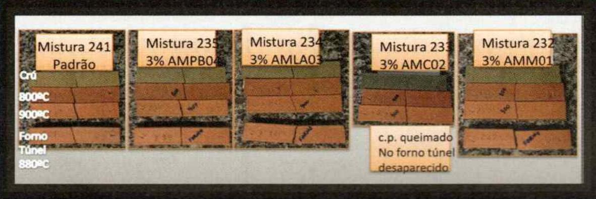 Figura 3 - Aspecto geral da cor dos vários tipos de corpos de prova queimados às várias temperaturas: 850, 900°C e no forno túnel a 880°C